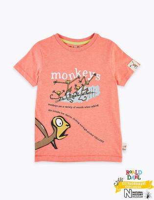 Marks and Spencer Roald Dahl & NHM Monkey T-Shirt (2-7 Yrs)