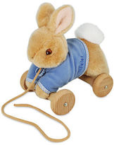Beatrix Potter NEW Pull Along Peter Rabbit