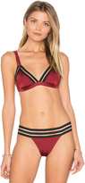 Beach Bunny Sheer Addiction Tri Bikini Top