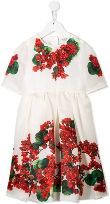 Dolce & Gabbana Embroidered Floral Dress