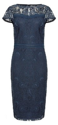 Dorothy Perkins Womens Navy Lace Trim Pencil Dress