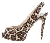 Brian Atwood Leopard Print Snakeskin Pumps
