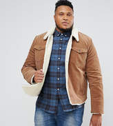 Asos Plus Borg Lined Cord Jacket In Brown