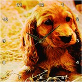 Irish Setter 3dRose LLC Puppy Wall Clock, 10 by 10-Inch