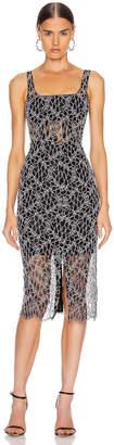 Dion Lee Vein Lace Corset Dress in Black & White | FWRD