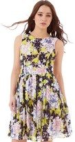 French Connection Womens Botanical Trip Lace Dress Acid Blonde Multi
