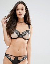 Playful Promises Amelia Embroidered Bra
