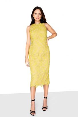 Little Mistress Mustard Lace Dress