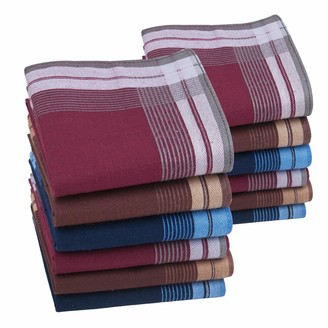 Houlife Mens Thick Handkerchiefs 100% 60S Cotton Classic Stripe Checkered Pattern Coloured Plaid Hankies for Dad Grandad 6/12 Pieces 40x40cm