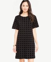 Ann Taylor Velvet Dot T-Shirt Dress
