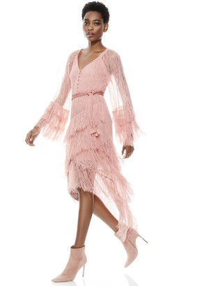Alice + Olivia Onica Asymmetrical Lace Dress