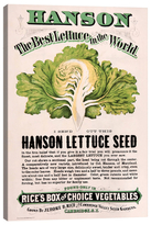 iCanvas Rice's Hanson Lettuce Seed Advertisement by New York Botanical Garden (Canvas)