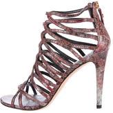 Stuart Weitzman Snakeskin Caged Sandals