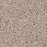 Axminster Devonia 50oz Twist Carpet