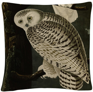 "Trademark Fine Art John James Audubon 'Snowy Owl' 16""x16"" Decorative Throw Pillow"