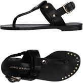 Andrea Morando Toe strap sandals - Item 11119338