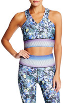 Nanette Lepore Digital Ditsy Sports Bra