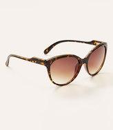 LOFT Femme Cateye Sunglasses