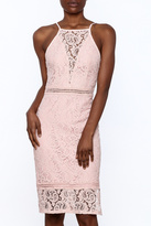 Sugar Lips Pink Lace Bodycon Dress