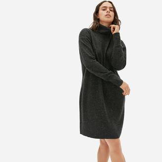 Everlane The Cashmere Turtleneck Dress