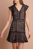 Greylin Villa Fit & Flare Dress