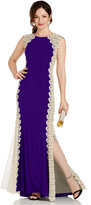Xscape Evenings Crochet Lace Column Gown