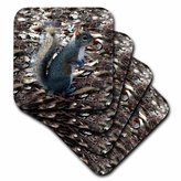 3dRose cst_1016_3 Gray Squirrel Ceramic Tile Coasters, Set of 4