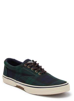Sperry Halyard CVO Plaid Sneaker