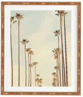 DENY Designs Los Angeles Palms by Catherine Mcdonald (Framed)