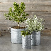 Galvanized Planters, Set of 3