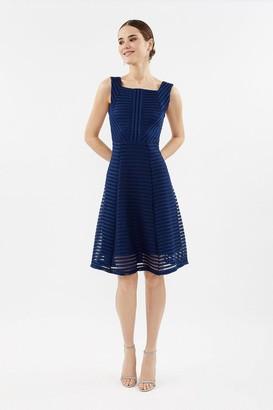 Coast A-Line Scuba Mesh Dress