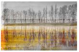 Parvez Taj Sunset Lake (Canvas)