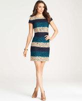Ann Taylor Bold Stripe Lace Dress