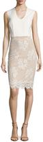 Ava & Aiden Lace Skirt Sheath Dress