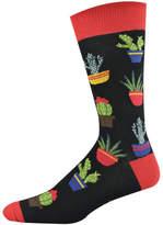 Bamboozld Cactus Sock