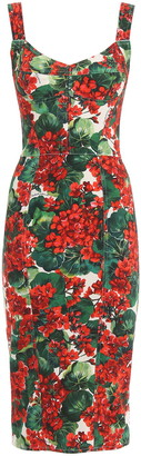 Dolce & Gabbana Printed Gerani Dress