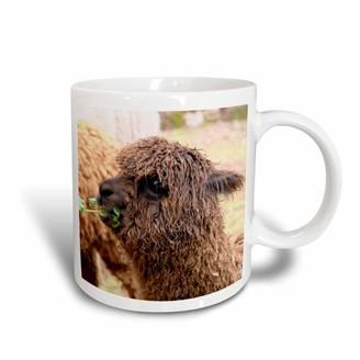 3drose 3dRose Peru. Alpaca Huacaya wildlife, Awana Kancha - SA17 KWI0099 - Kymri Wilt, Ceramic Mug, 15-ounce