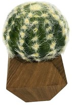 Threshold Artificial Cactus in Wood Pot Small