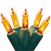 Asstd National Brand Set Of 50 Gold Mini Christmas Lights 2.5 Bulb Spacing With Green Wire