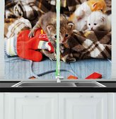 Cats Kitchen Curtains by Ambesonne, Kittens and Mittens Newborns Baby Animals in an Plain Blanket Wood Play Toys Adorable, Window Drapes 2 Panels Set for Kitchen Cafe, 55W X 39L Inches, Multicolor
