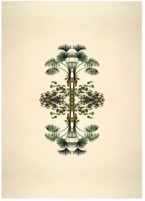 The Dybdahl Co. Botanical Reflection