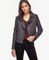 Ann Taylor Petite Notched Wool Blend Moto Jacket