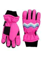 Capelli New York Thinsulated Zigzag Print Gloves