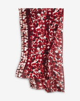 White House Black Market Ombre-Dot Oblong Scarf
