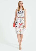 Thumbnail for your product : Phase Eight Jaida Floral Peplum Dress