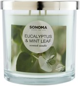 Sonoma Goods For Life SONOMA Goods for Life Eucalyptus & Mint Leaf 14-oz. Candle Jar