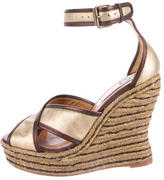 Lanvin Metallic Espadrille Wedges