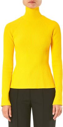 Carolina Herrera Raglan Sleeve Knit Turtleneck Top