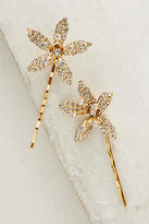 Jennifer Behr Orchid Bobby Pin Set