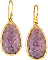 Ippolita Rock Candy® Medium Amethyst Doublet Teardrop Earrings
